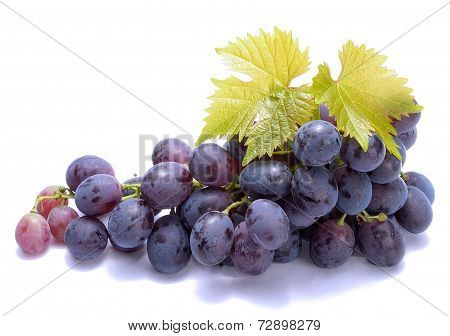 Red grapes with leaf