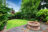 image of grass area  - Backyard landscape - JPG