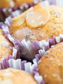 stock photo of spores  - Macro shot of fungus spore growing on cupcakes