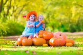 stock photo of baby cowboy  - Happy children at pumpking patch during Halloween little girl in a blue dress boots and cowboy hat and baby boy having fun together trick or treating on a sunny autumn day - JPG
