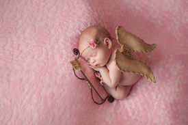 stock photo of cupid  - Portrait of 10 day old newborn baby girl - JPG