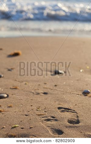 Print of foot upon the sand on the beach