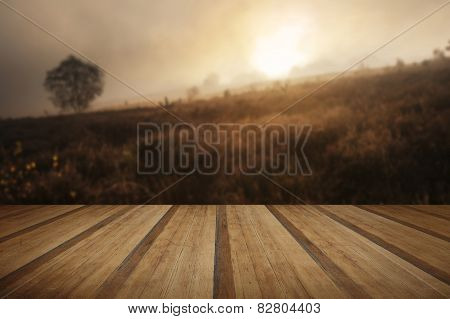 Foggy Misty Autumn Forest Landscape At Dawn With Wooden Planks Floor