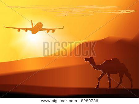 Vector desert,camel,jet.