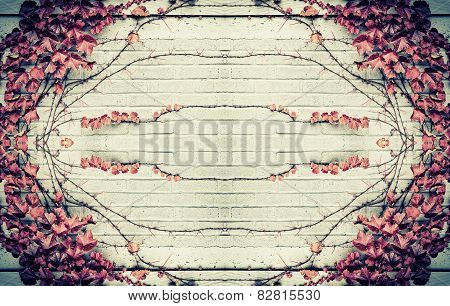 Autumn Grape Leaves Border Design