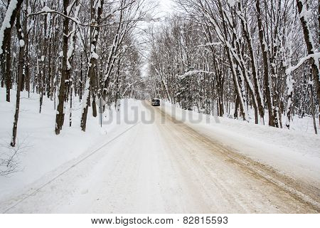 Winter Rural Road Through A Snowy Forest