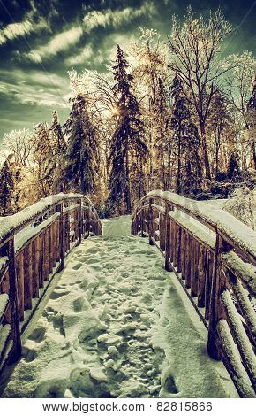 Frozen Bridge In A Park Landscape - Retro