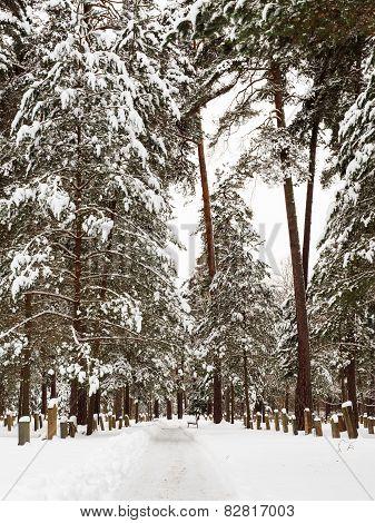 Woodland Cemetery in Stockholm, Sweden