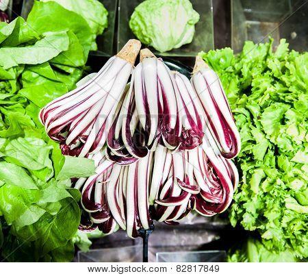 Bunch Of Italian Salad Radicchio In Market