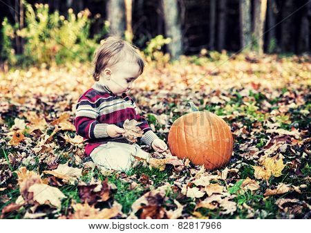Boy Sitting Beside Pumpkin Looking Down - Vintage