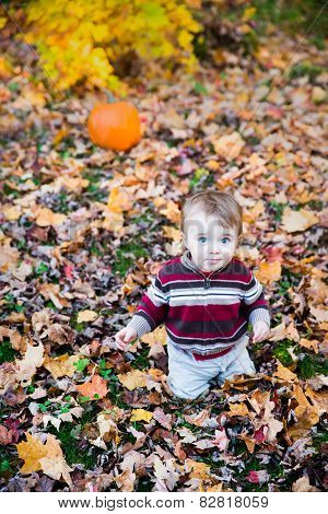 Boy Sitting In Leaves With A Pumpkin Behind Him