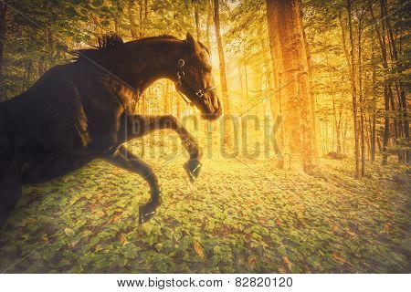 Horse In A Magical Fiery Forest