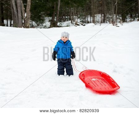Young Boy Holding The Rope To His Red Sled