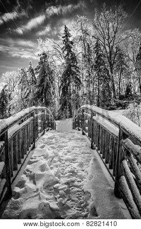 Frozen Bridge In A Park Landscape - Black And White