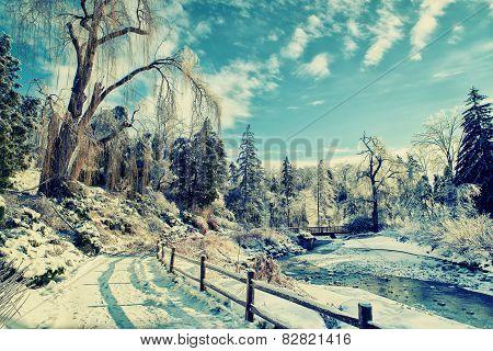 Frozen Park Landscape - Retro