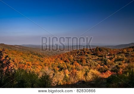 Turkish landscape in autumn