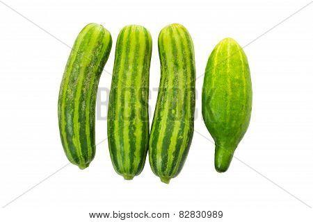 Vegetable Food Plant