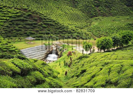 Small Arbor And Human Made Waterfall Surrounded By Hills Covered With Tea Bushes - Tea Plantation