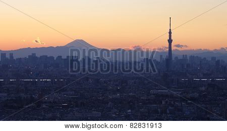 Tokyo city view with Tokyo skytree and mountain fuji