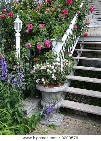Stairs and flowers