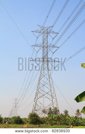 Large power pole over vegetable garden