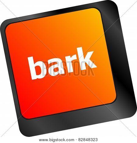 Bark Word On Keyboard Key, Notebook Computer