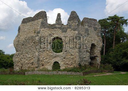 Odiham Castle, Hampshire