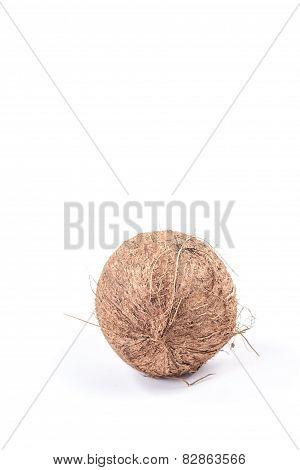 one ripe exotic fruit - coconut isolated on white background