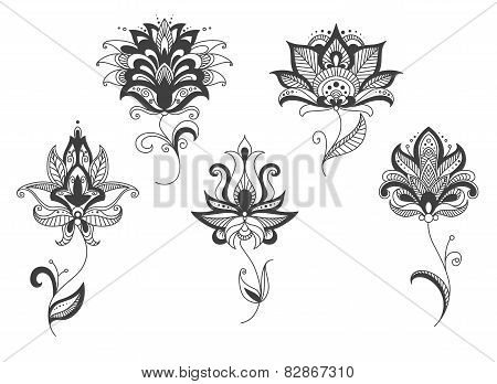 Persian lace gray flowers in paisley style
