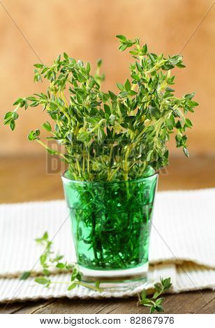 bunch of fresh green thyme in a glass
