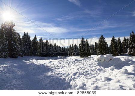 Monte Verena