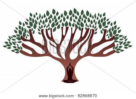 Woman Meditate Under The Big Thick Tree