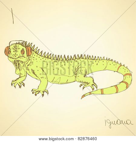Sketch Fancy Iguana In Vintage Style