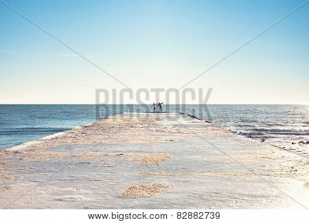 Couple On The Coast