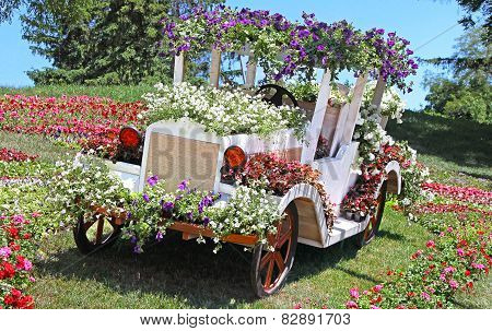 Flower Cars Exhibition At Spivoche Pole  In Kyiv, Ukraine