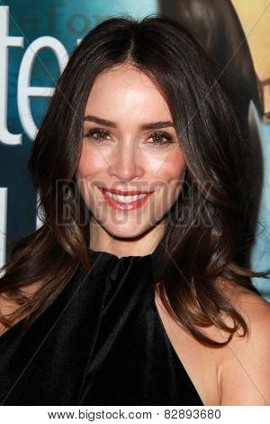 LOS ANGELES - FEB 14:  Abigail Spencer at the 2015 Writers Guild Awards at a Century Plaza Hotel on February 14, 2015 in Century City, CA