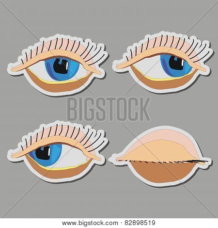 vector cartoon eyes, closed eyes