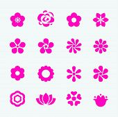 stock photo of daisy flower  - Flower Icon - JPG