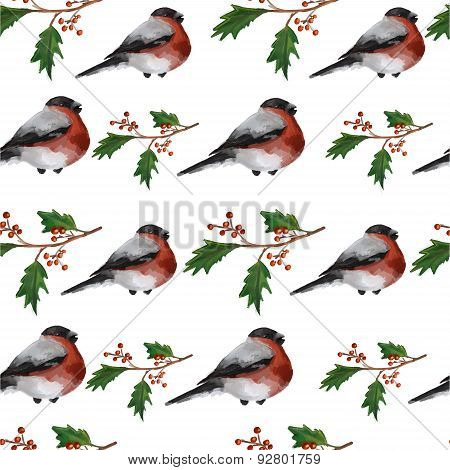 Christmas seamless background with holly berries and bullfinches on white background. Vector