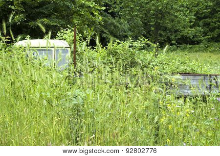 Old Abandoned Overgrown Car