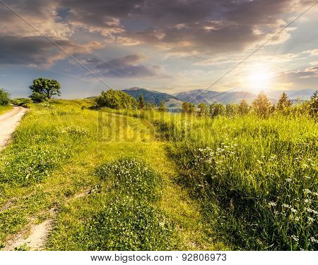 Road Through The Meadow On Hillside At Sunset