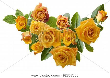 Beautiful  Frame With Bouquet Of Yellowish Orange Roses Isolated On White Background