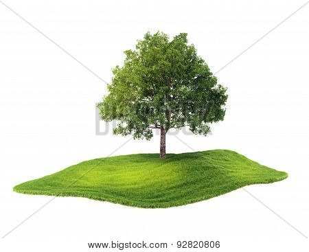 Island With Tree Floating In The Air