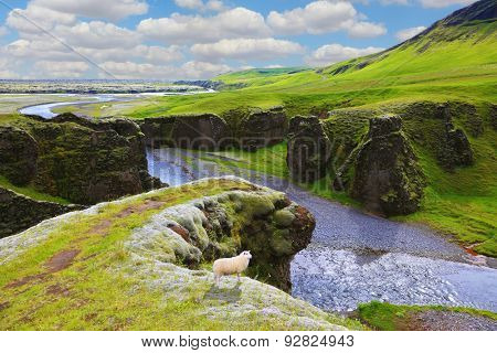 Dreamland Iceland. The picturesque canyon  Fjadrargljufur, green grass of rocks and blue ribbon of the river