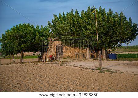 Old Farmhouse Barn On The Farm Field