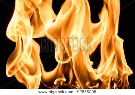 Burning flame on black background