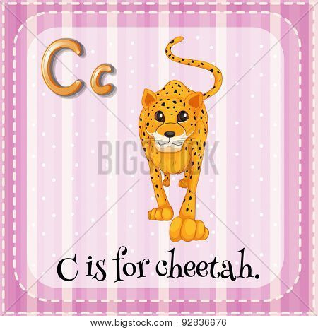 Flashcard for letter C with a picture of cheetah