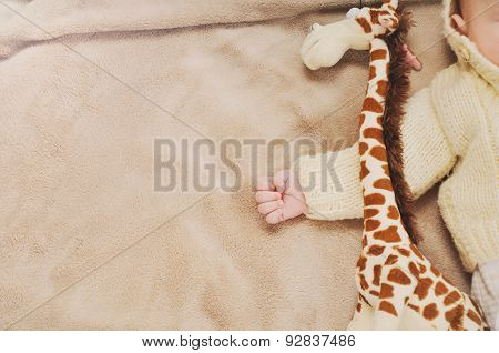 Close Up Little Hand Of Sleeping Cute Newborn Baby And His Toy