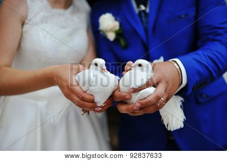 Doves At A Wedding