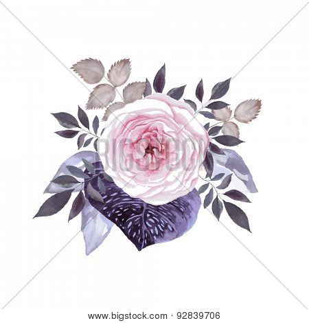 Pink tea rose blossom with decorative leaves. Watercolor image vector.